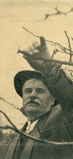 Veres péter Gorsiumban, 1965 (Fotó: Zaránd Gyula)